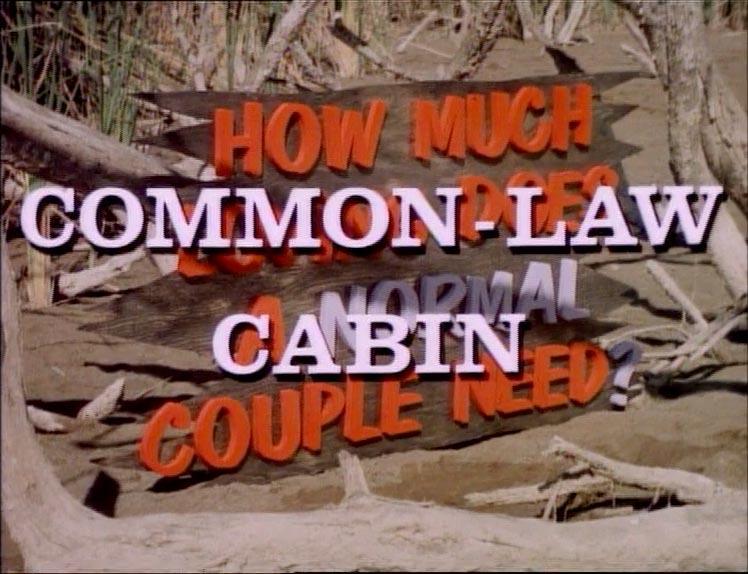 common-law-cabin-screen-1